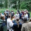 Svampetur i Søholt Storskov