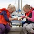 Kys en Fisk og hold en Krabbe - Aflyst